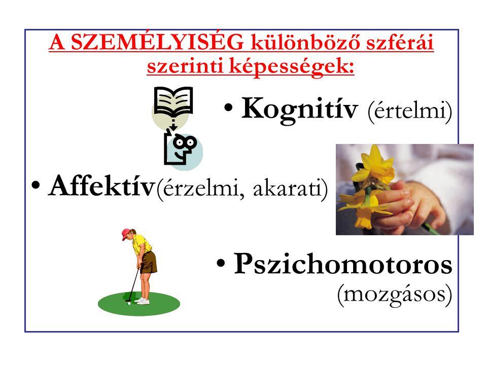 A SZEMÉLYISÉG különböző szférái szerinti képességek: