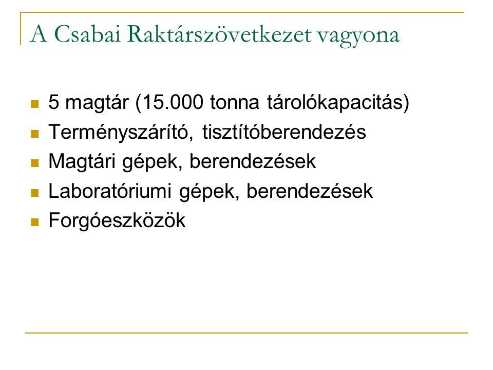 A Csabai Raktárszövetkezet vagyona