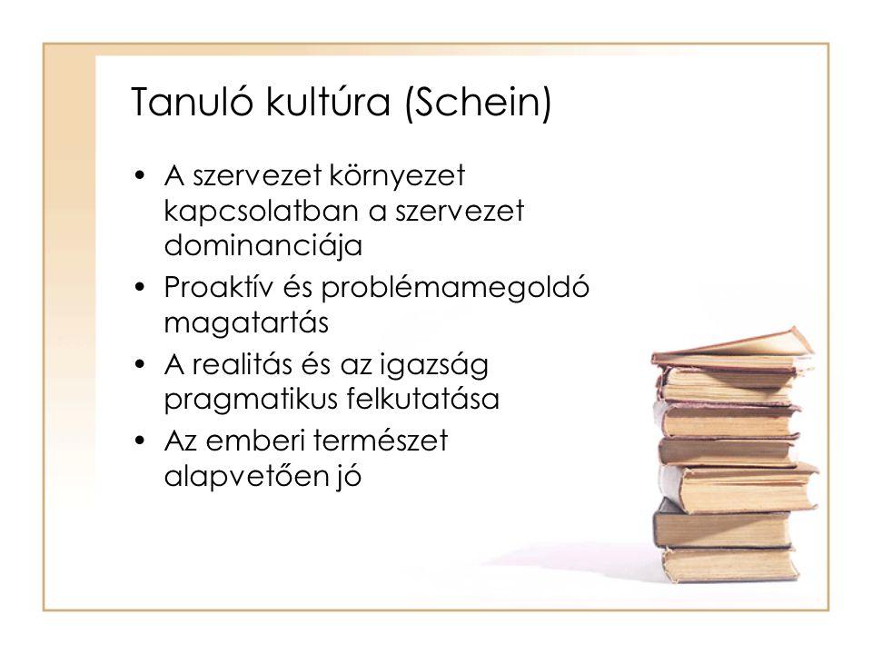 Tanuló kultúra (Schein)