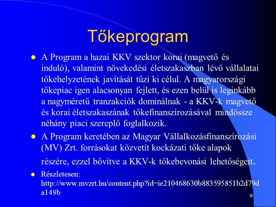 Tőkeprogram
