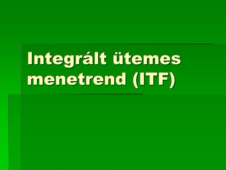 Integrált ütemes menetrend (ITF)