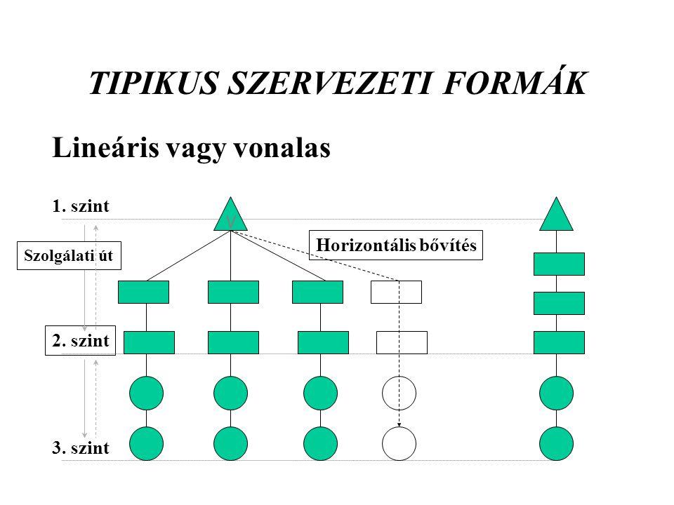TIPIKUS SZERVEZETI FORMÁK