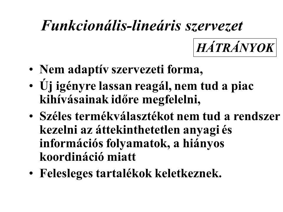 Funkcionális-lineáris szervezet