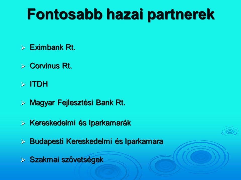 Fontosabb hazai partnerek