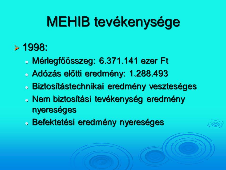 MEHIB tevékenysége 1998: Mérlegfőösszeg: 6.371.141 ezer Ft