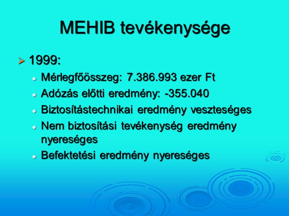 MEHIB tevékenysége 1999: Mérlegfőösszeg: 7.386.993 ezer Ft