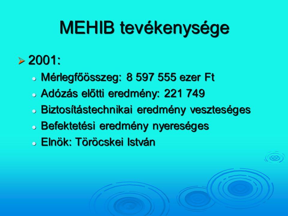 MEHIB tevékenysége 2001: Mérlegfőösszeg: 8 597 555 ezer Ft