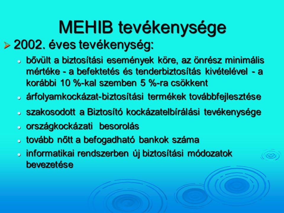 MEHIB tevékenysége 2002. éves tevékenység: