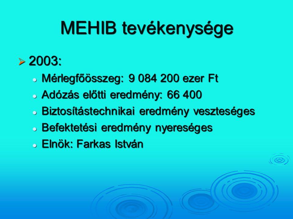 MEHIB tevékenysége 2003: Mérlegfőösszeg: 9 084 200 ezer Ft