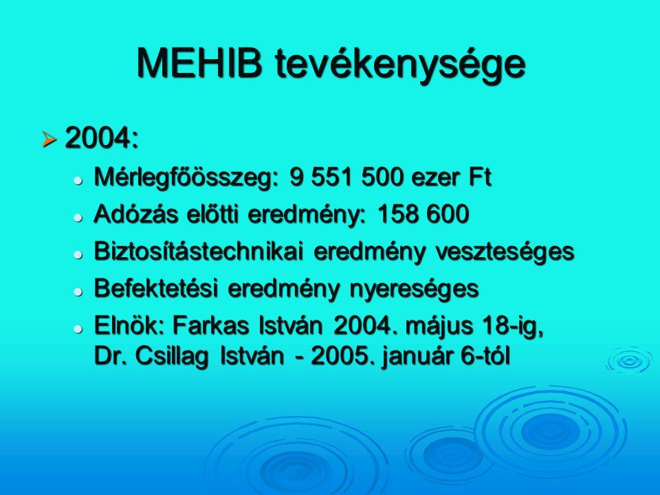 MEHIB tevékenysége 2004: Mérlegfőösszeg: 9 551 500 ezer Ft