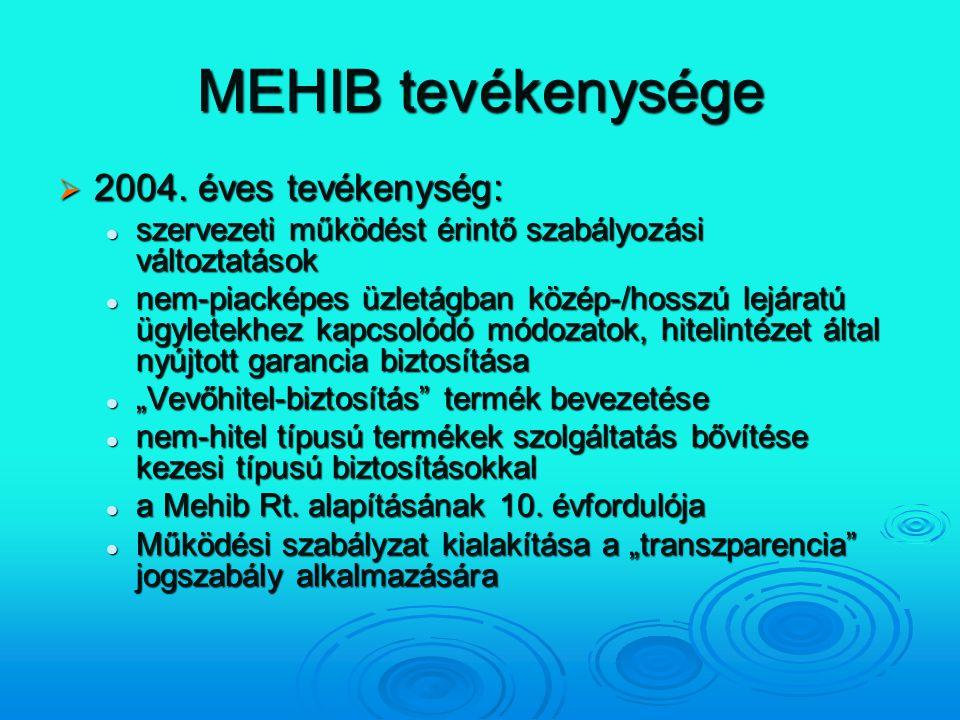 MEHIB tevékenysége 2004. éves tevékenység: