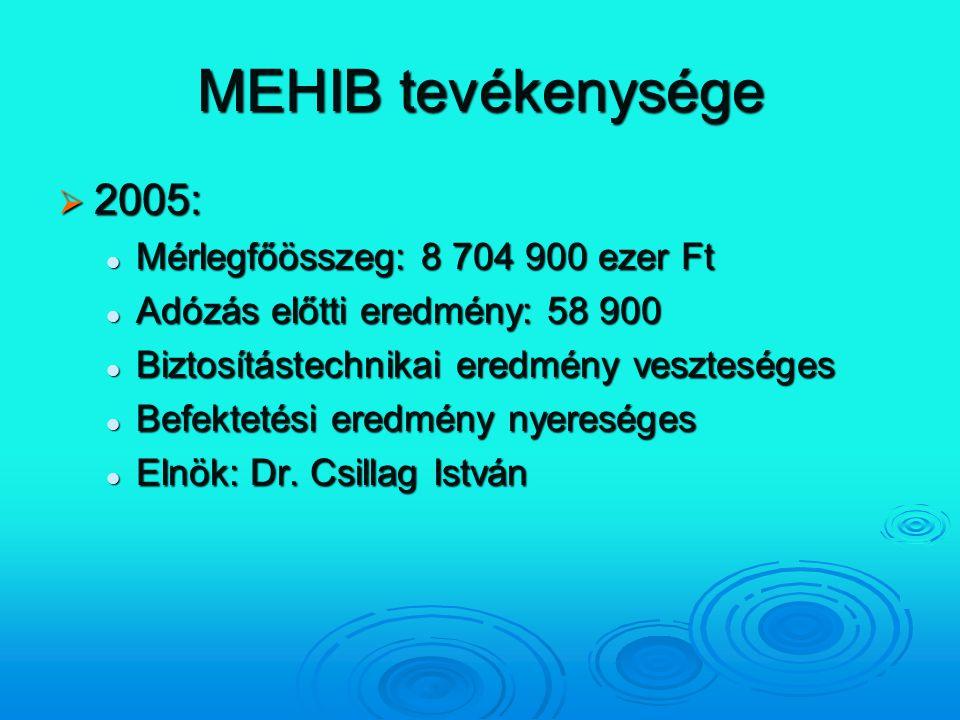MEHIB tevékenysége 2005: Mérlegfőösszeg: 8 704 900 ezer Ft
