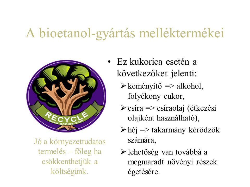 A bioetanol-gyártás melléktermékei