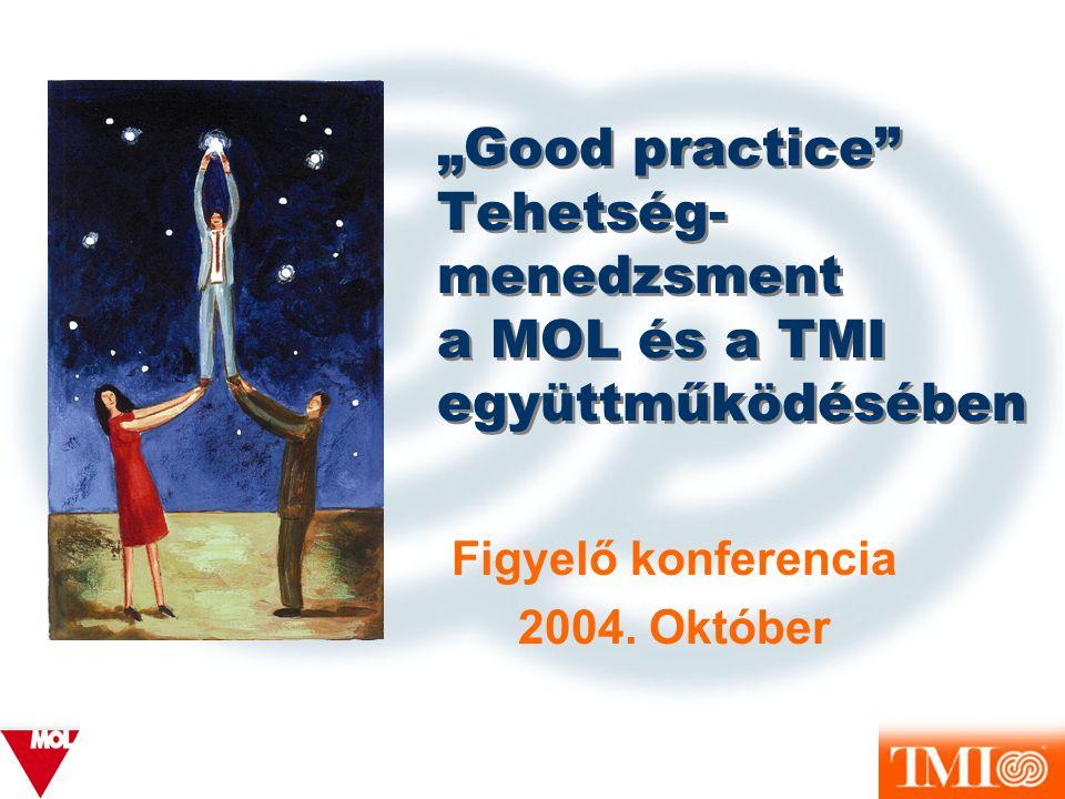 """""""Good practice Tehetség-menedzsment a MOL és a TMI együttműködésében"""