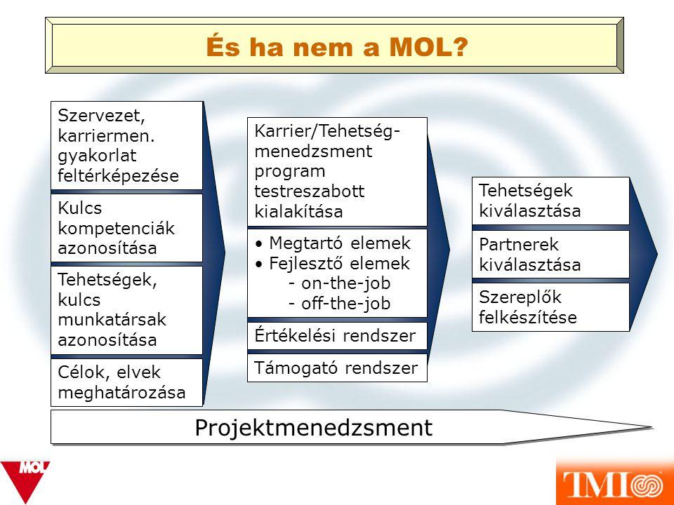 És ha nem a MOL Projektmenedzsment