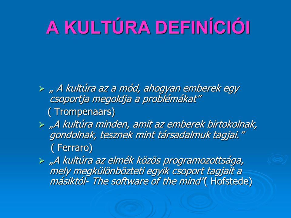 """A KULTÚRA DEFINÍCIÓI """" A kultúra az a mód, ahogyan emberek egy csoportja megoldja a problémákat ( Trompenaars)"""