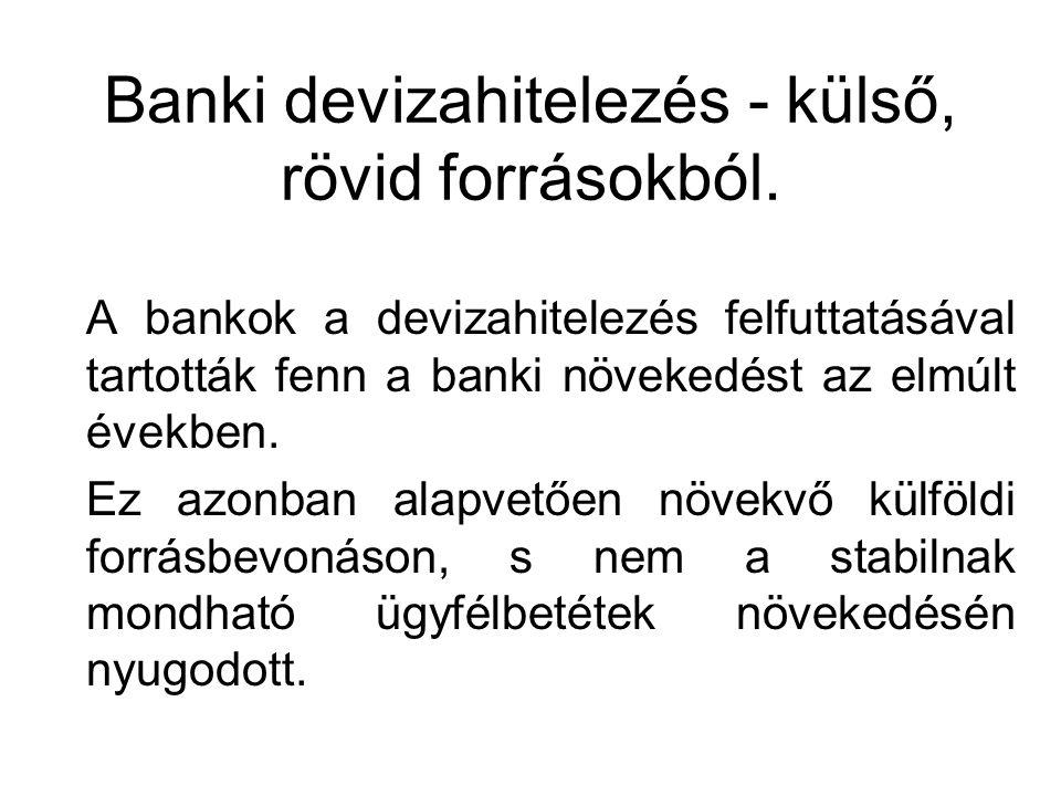 Banki devizahitelezés - külső, rövid forrásokból.