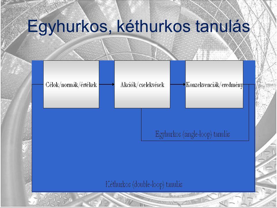 Egyhurkos, kéthurkos tanulás
