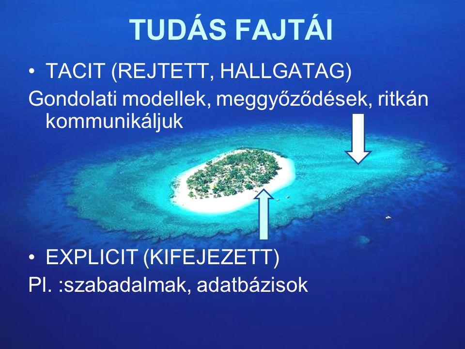 TUDÁS FAJTÁI TACIT (REJTETT, HALLGATAG)