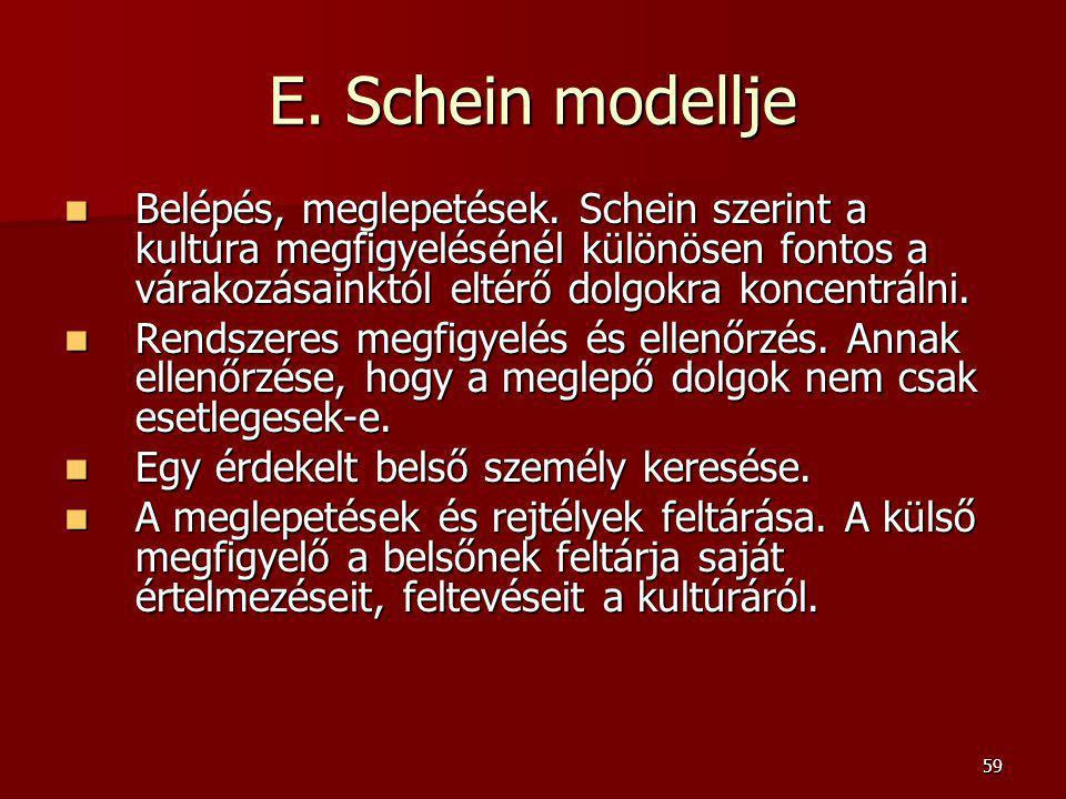 E. Schein modellje Belépés, meglepetések. Schein szerint a kultúra megfigyelésénél különösen fontos a várakozásainktól eltérő dolgokra koncentrálni.