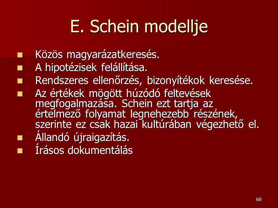 E. Schein modellje Közös magyarázatkeresés. A hipotézisek felállítása.