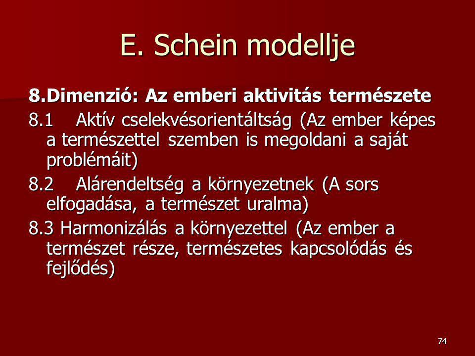 E. Schein modellje 8. Dimenzió: Az emberi aktivitás természete