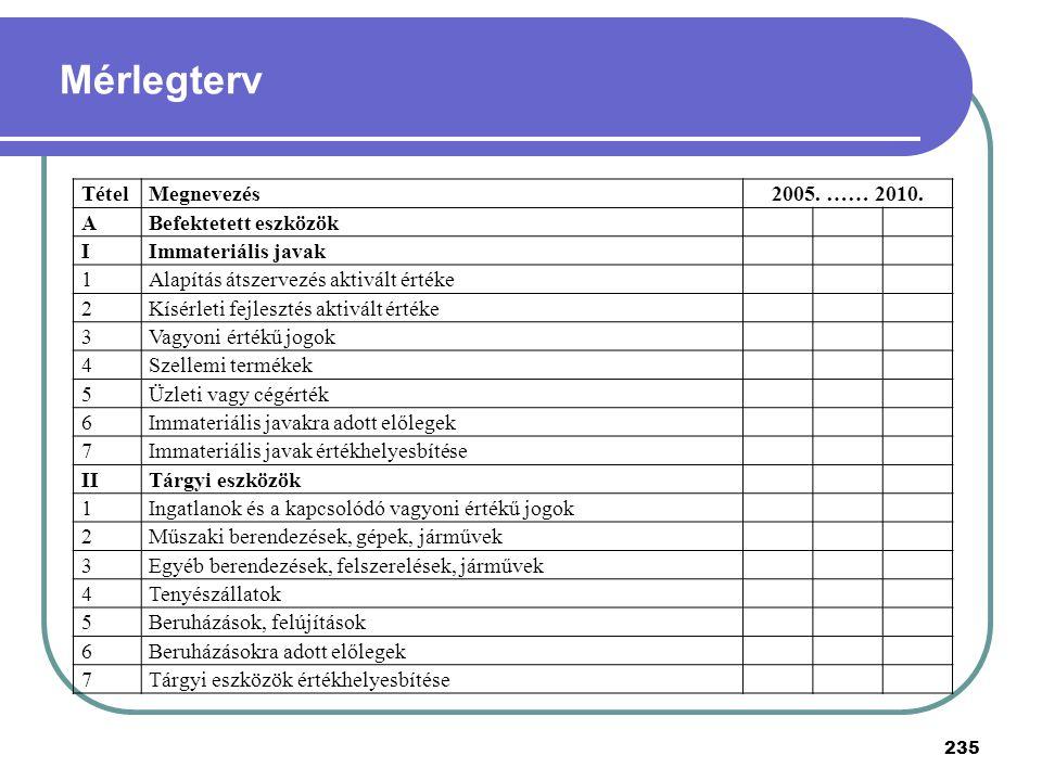 Mérlegterv Tétel Megnevezés 2005. …… 2010. A Befektetett eszközök I