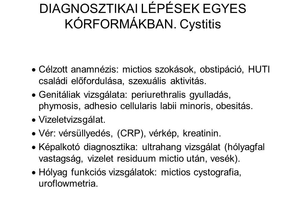DIAGNOSZTIKAI LÉPÉSEK EGYES KÓRFORMÁKBAN. Cystitis