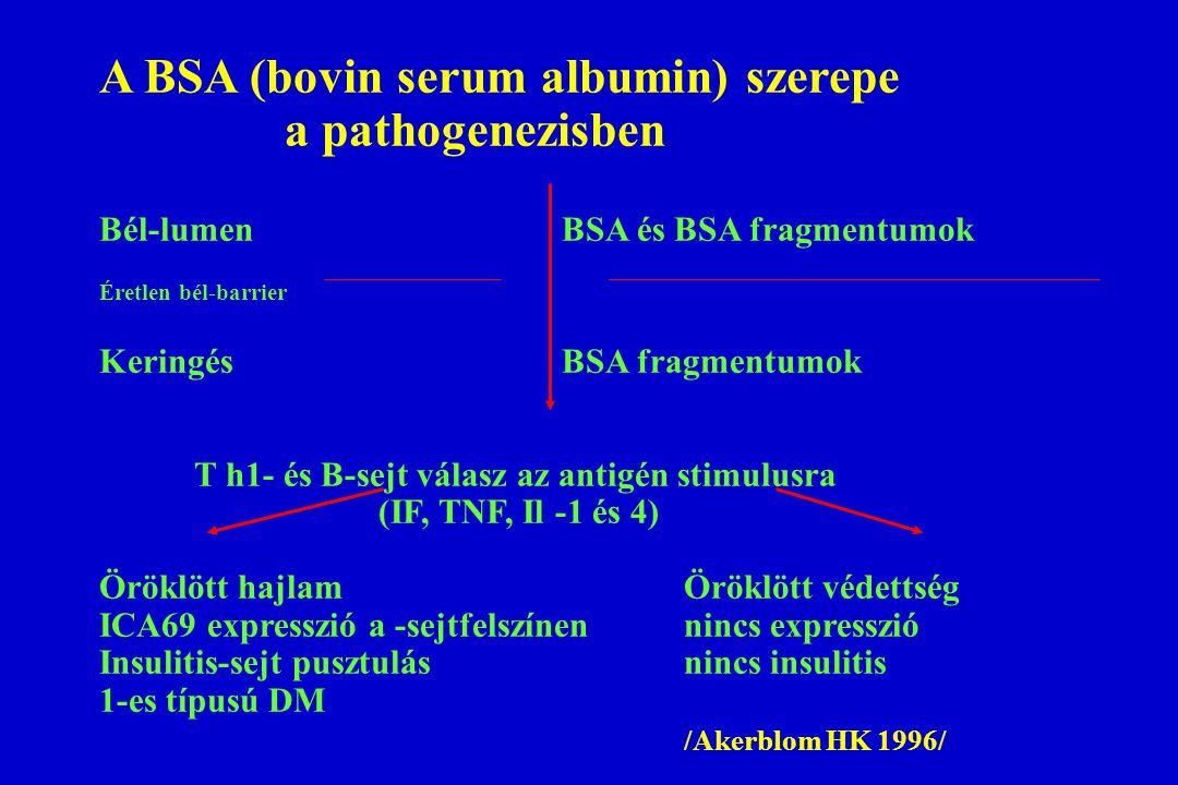 A BSA (bovin serum albumin) szerepe a pathogenezisben