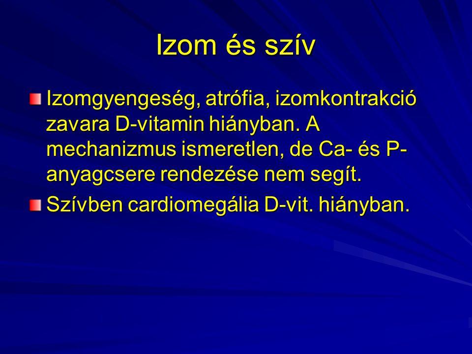 Izom és szív Izomgyengeség, atrófia, izomkontrakció zavara D-vitamin hiányban. A mechanizmus ismeretlen, de Ca- és P-anyagcsere rendezése nem segít.