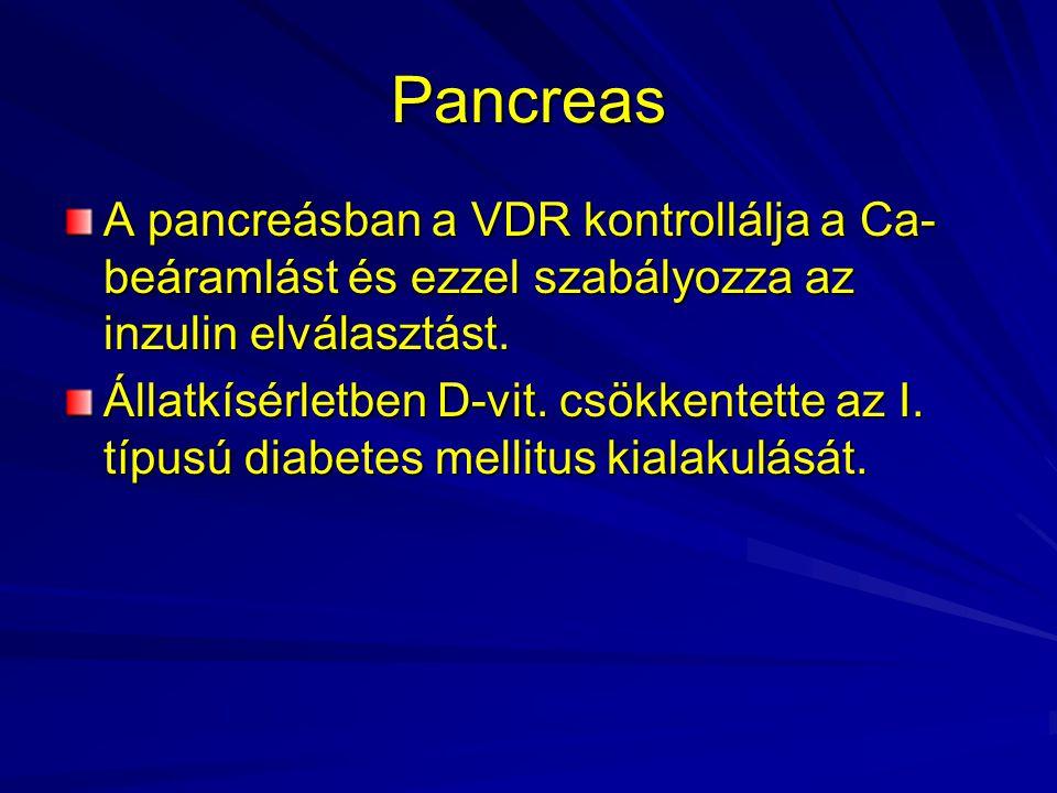 Pancreas A pancreásban a VDR kontrollálja a Ca-beáramlást és ezzel szabályozza az inzulin elválasztást.