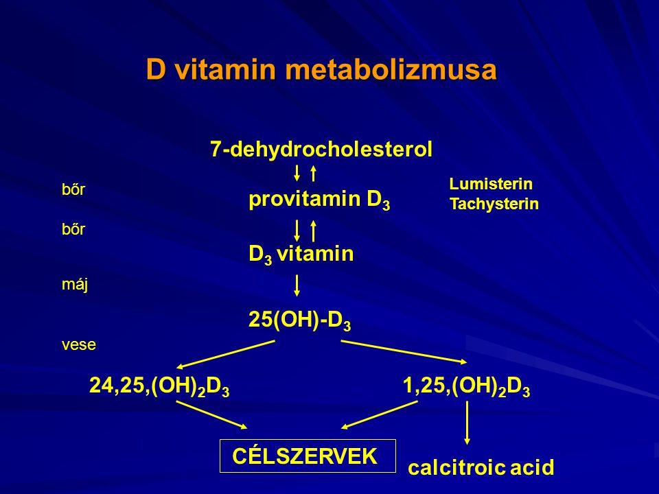 D vitamin metabolizmusa
