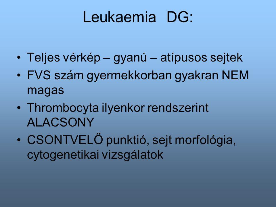 Leukaemia DG: Teljes vérkép – gyanú – atípusos sejtek