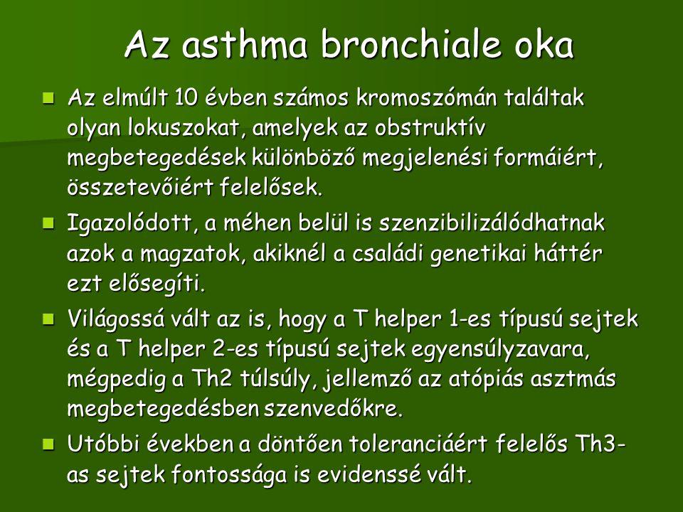 Az asthma bronchiale oka