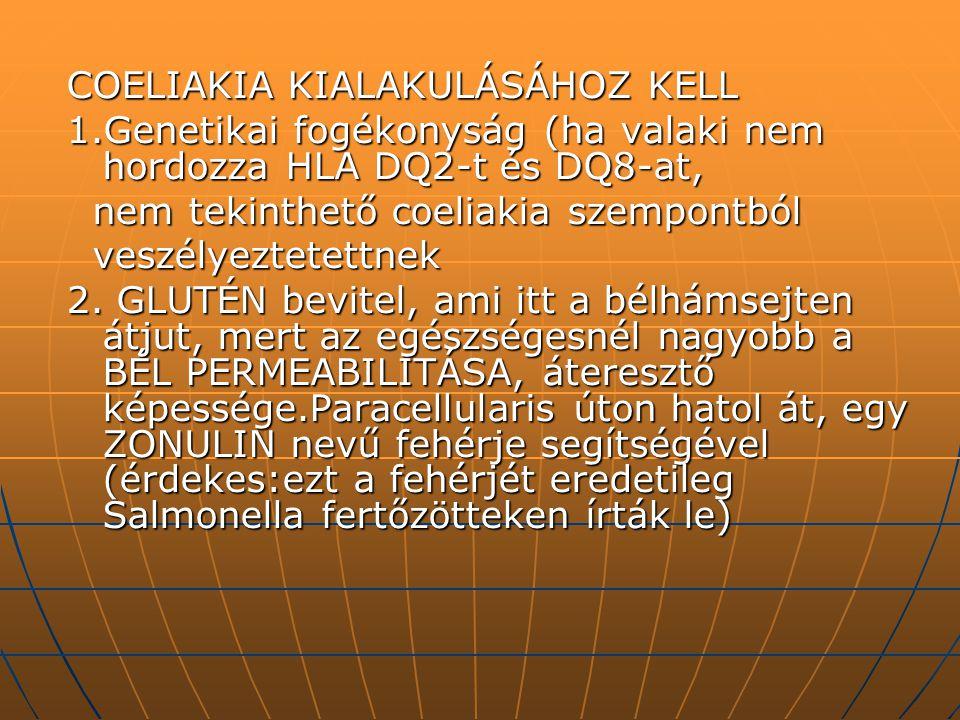 COELIAKIA KIALAKULÁSÁHOZ KELL