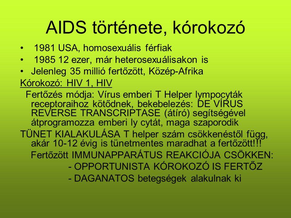 AIDS története, kórokozó