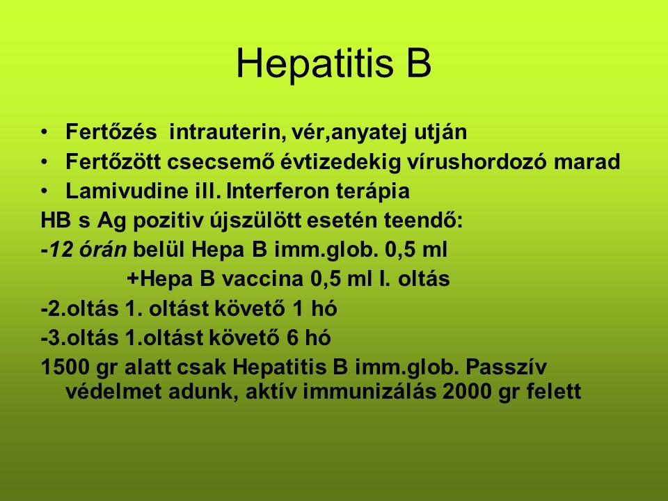 Hepatitis B Fertőzés intrauterin, vér,anyatej utján