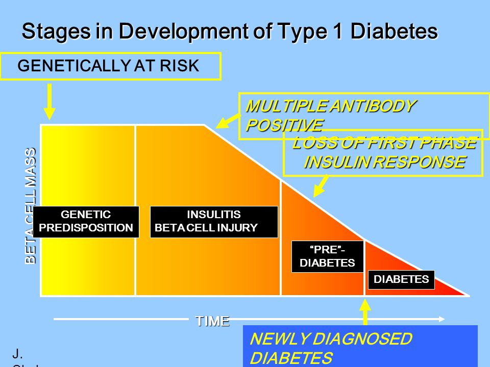 Stages in Development of Type 1 Diabetes