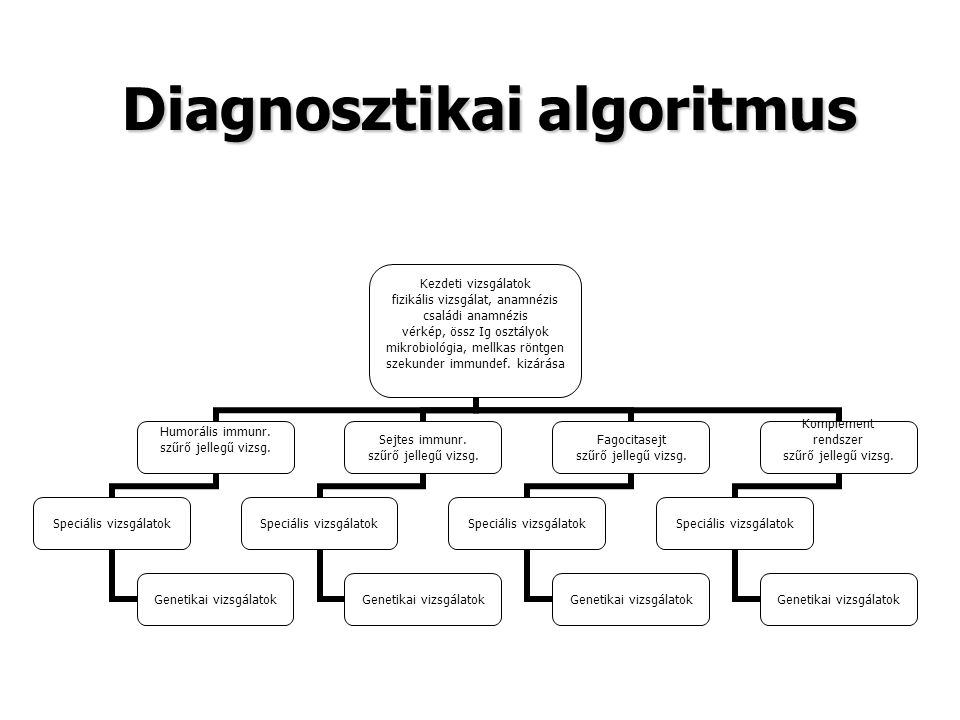 Diagnosztikai algoritmus
