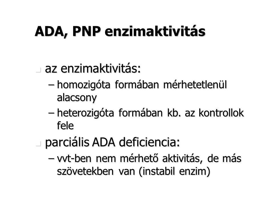 ADA, PNP enzimaktivitás