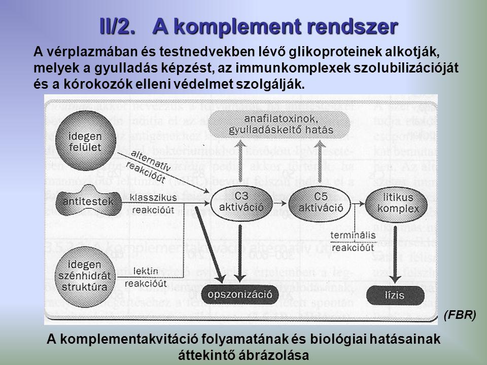 A komplementakvitáció folyamatának és biológiai hatásainak