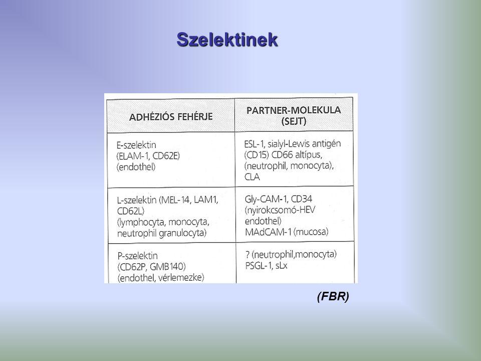 Szelektinek (FBR)