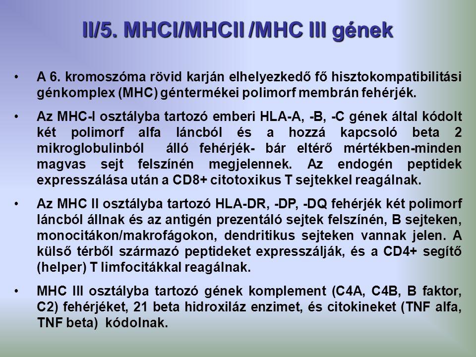 II/5. MHCI/MHCII /MHC III gének