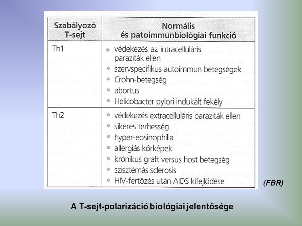 A T-sejt-polarizáció biológiai jelentősége