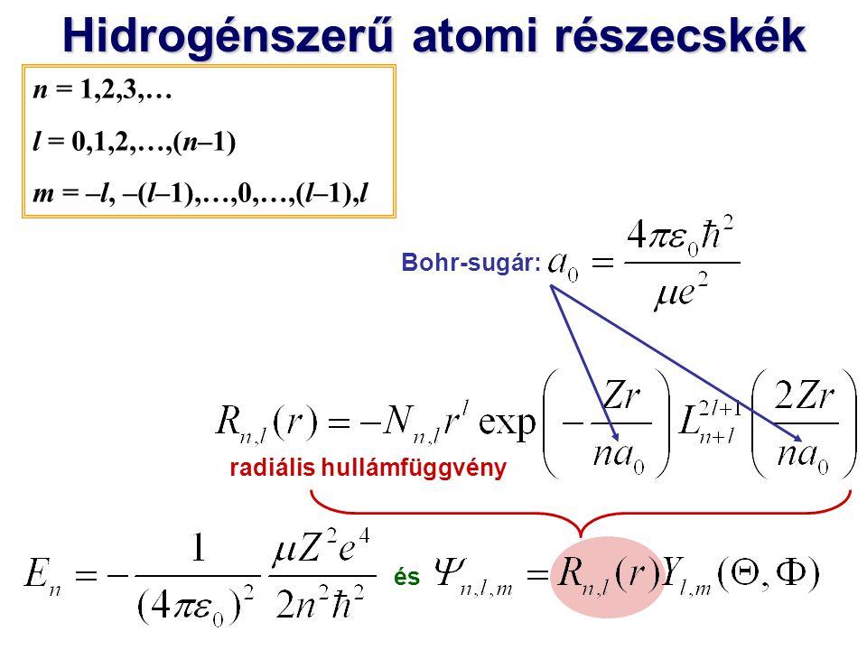 Hidrogénszerű atomi részecskék radiális hullámfüggvény
