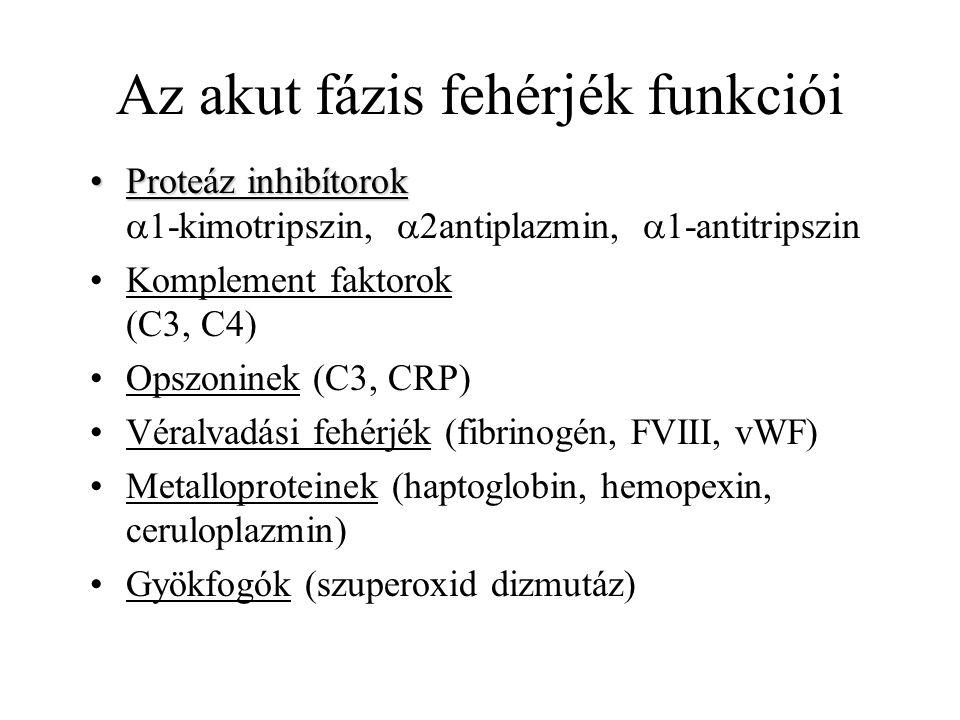 Az akut fázis fehérjék funkciói