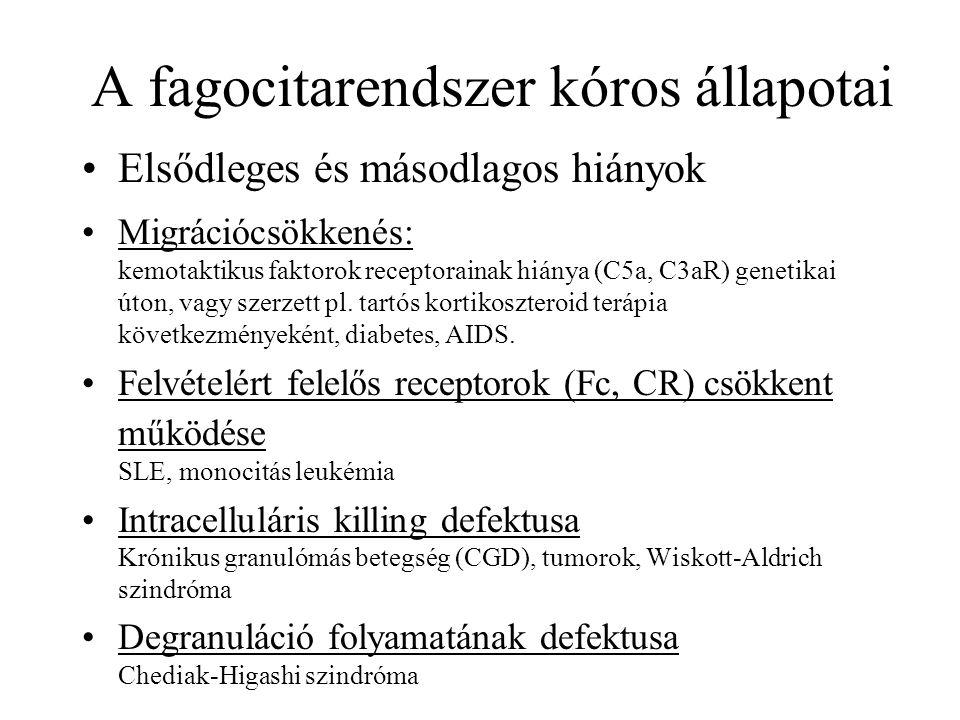 A fagocitarendszer kóros állapotai