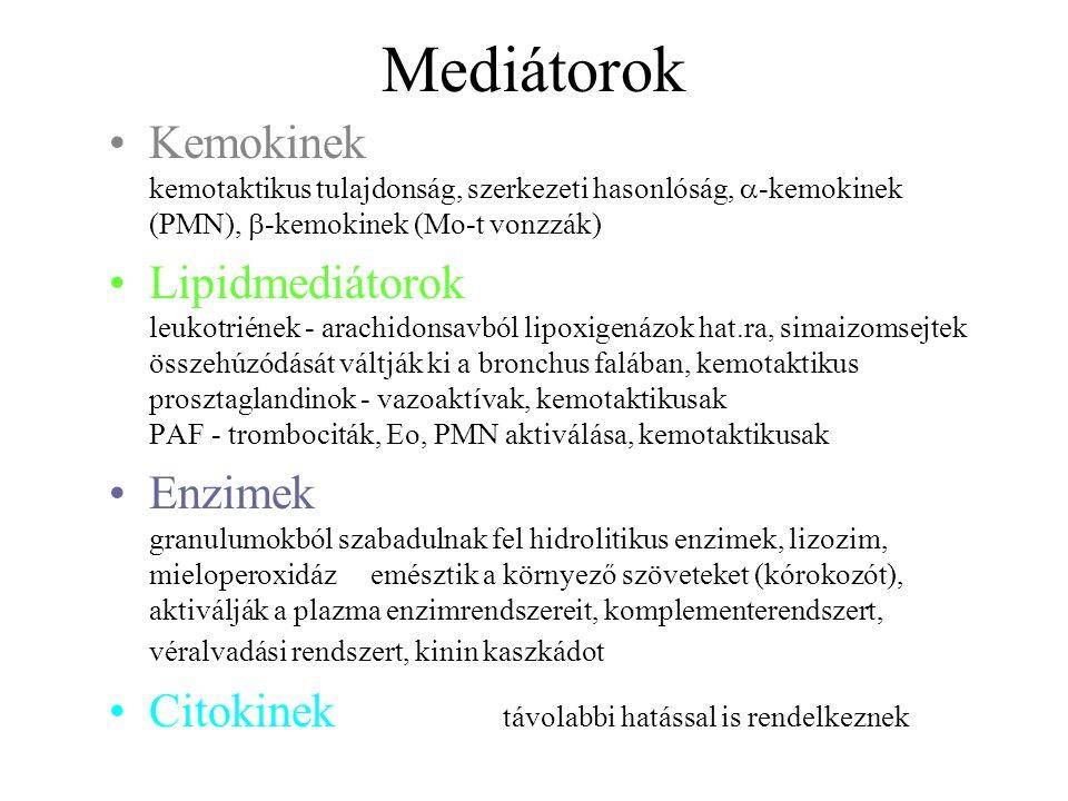 Mediátorok