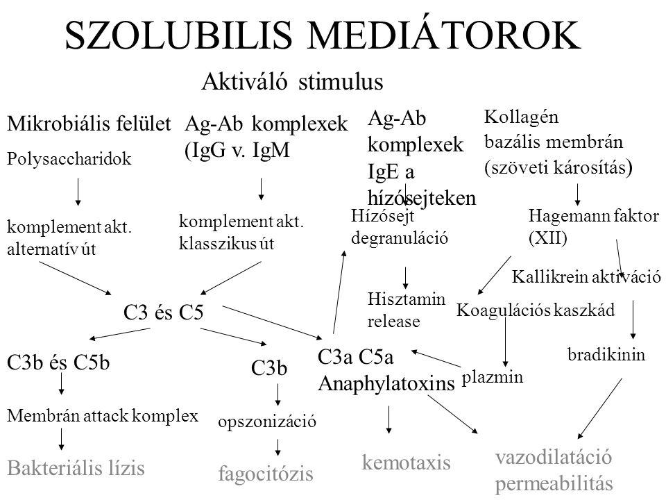 SZOLUBILIS MEDIÁTOROK