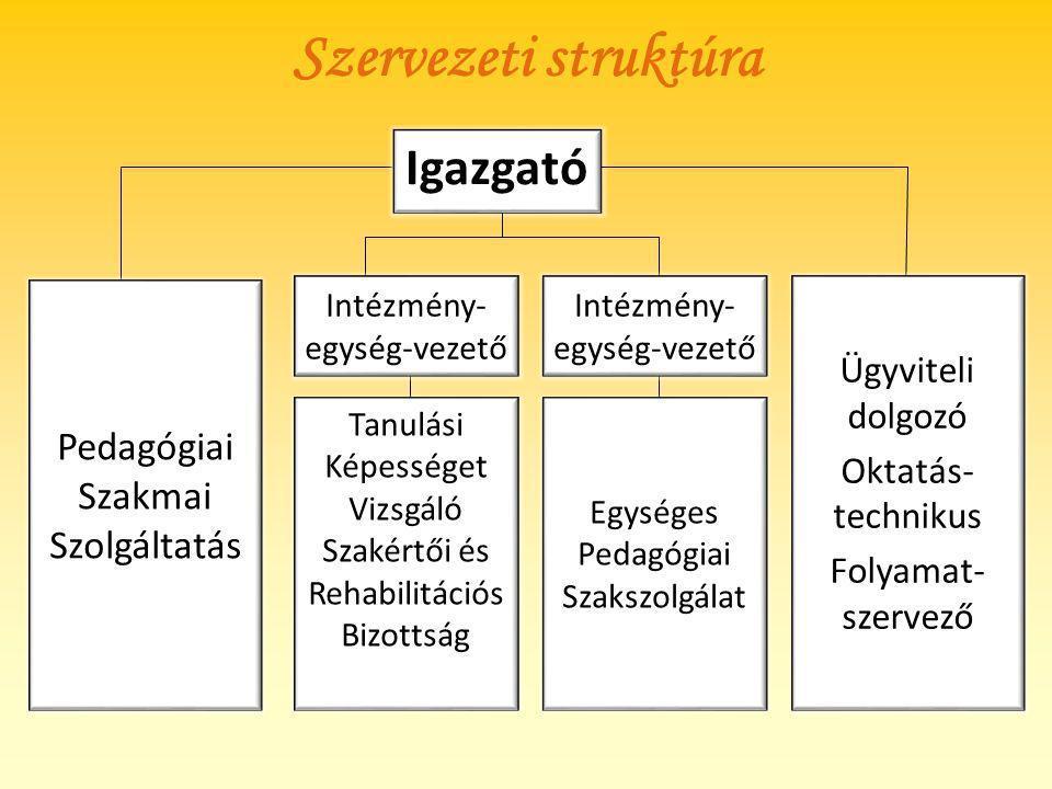 Szervezeti struktúra Igazgató Pedagógiai Szakmai Szolgáltatás